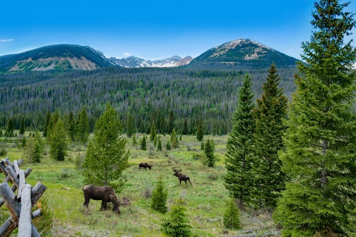 Benefits Of Investing In Land Near National Parks