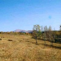 Hunting Land for Sale in Teller County, CO