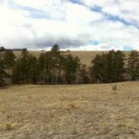 39 Mile Hunting Ranch  for Sale in Park County, CO