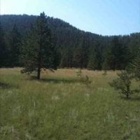 Evergreen Hideaway for Sale in Teller County, CO
