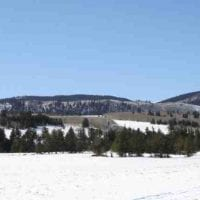 Trout Creek Elk Camp for sale in Park County, CO