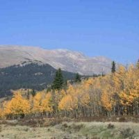 Red Hill Homestead for Sale in Park County, CO