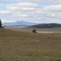 Elk Camp Retreat for Sale in Park County, CO