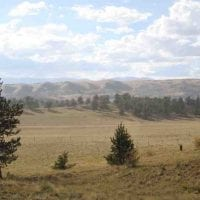 Elk Horn Hide-A-Way for Sale in Park County, CO
