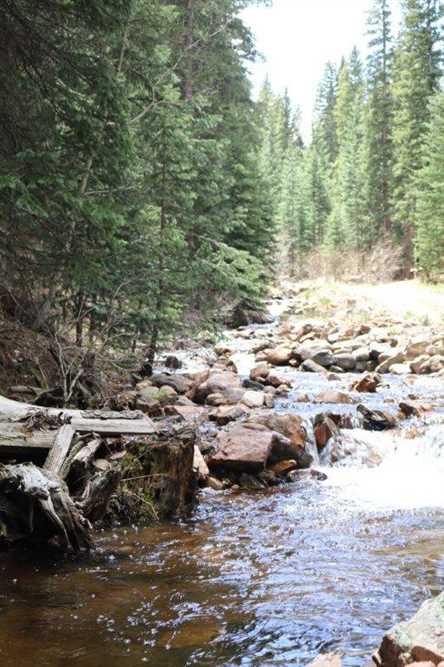 Camp creek retreat mossy oak properties colorado for Cottages at camp creek